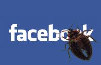 facebook-bug.png