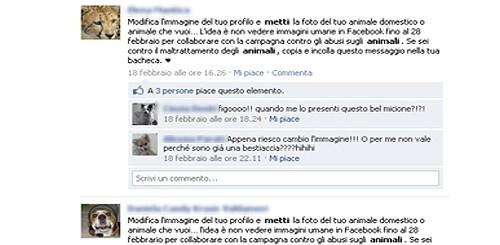 Animali su Facebook