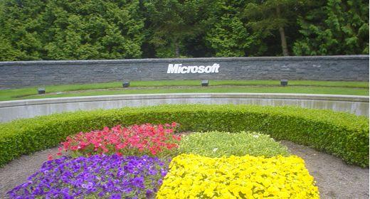 Aiuola Microsoft Windows