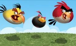 angry birds windows phone 7