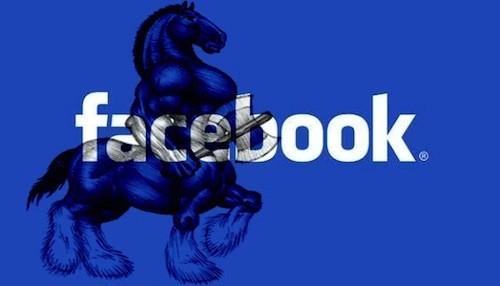 Facebook Spartan