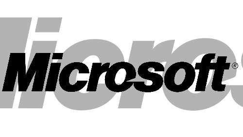 Microsoft Wikileaks