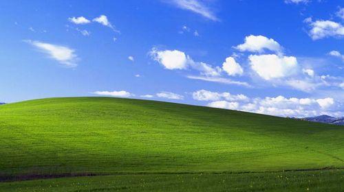 Windows XP collina verde