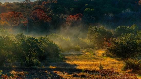 Foto copiata su Flickr