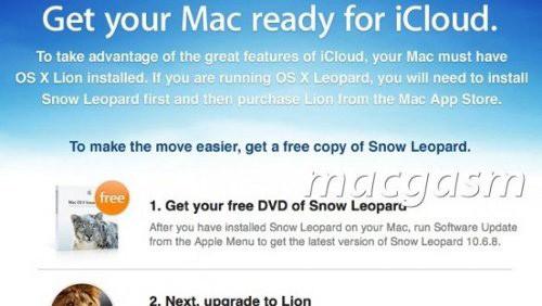 Snow Leopard Gratis