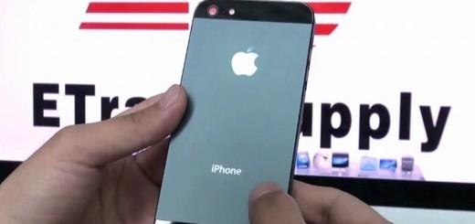 Parte posteriore dell'iPhone 5