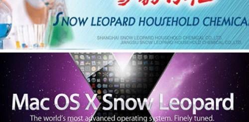 Snow Leopard Cina