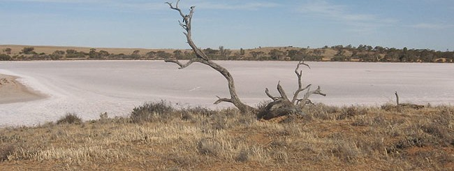 Deserto di Mildura
