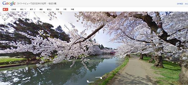 I fiori di ciliegio giapponesi festeggiano l'arrivo della primavera su Google Street View
