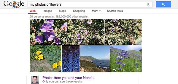 Le fotografie caricate sul social network Google+ compaiono nei risultati delle ricerche