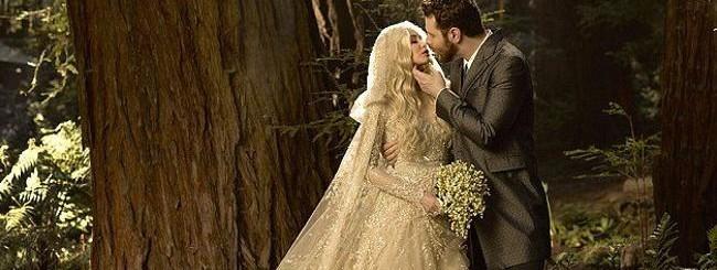 Il matrimonio di Sean Parker