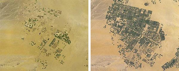 Arabia Saudita, i campi agricoli prima (sinistra) e dopo l'aggiornamento) destra