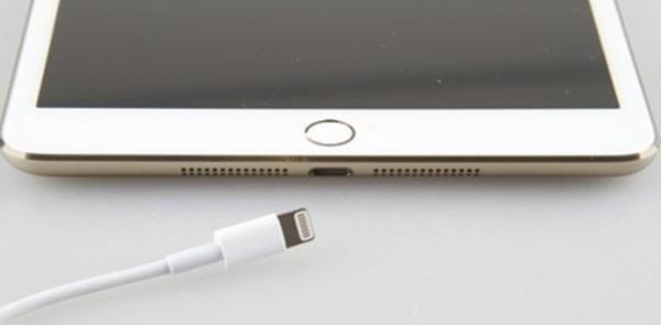 iPad Mini, Touch ID