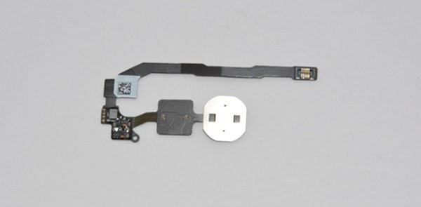 Retro sensore iPhone 5S