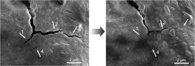 A sinistra si possono vedere le microfratture nell'anodo. A destra le stesse microfratture dopo 5 ore.