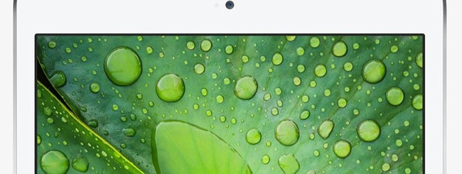 iPad Mini Display Retina