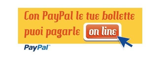 paypal enel