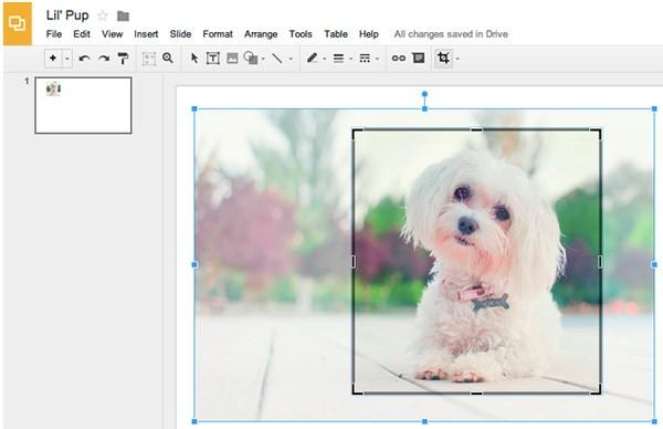Lo strumento Ritaglia immagine introdotto oggi per le Presentazioni e i Disegni di Google Drive