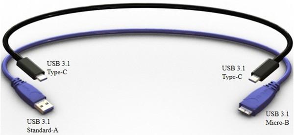 Il nuovo connettore USB 3.1 Type-C, in un mock-up realizzato da Foxconn