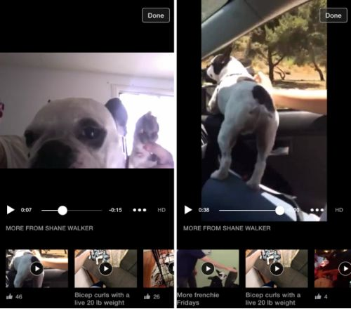 Facebook new video player