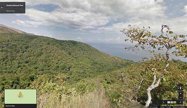 Il lago Tanganyika nel Gombe National Park, immortalato su Google Street View