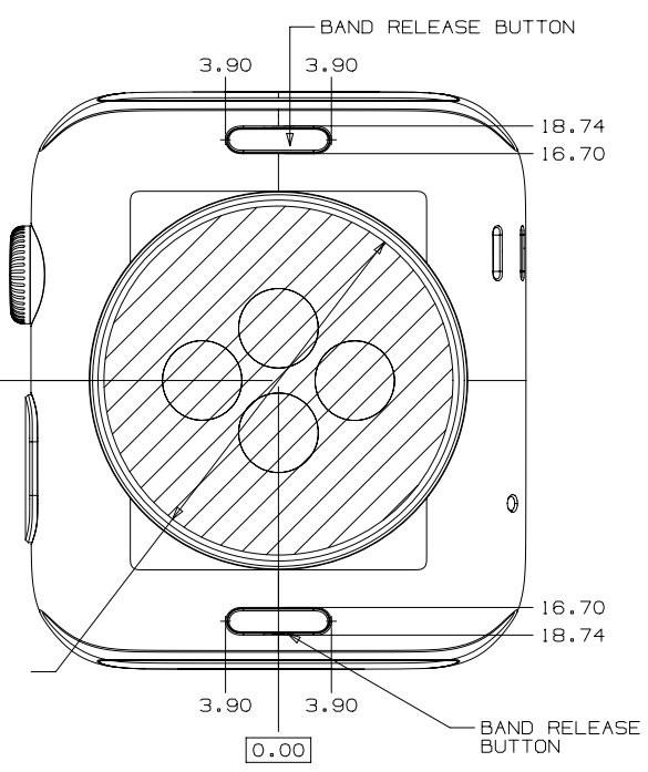 Informazioni sulla guida per lo sviluppo di cinturini per Apple Watch