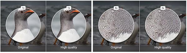 La qualità delle immagini salvate con Google Foto su server cloud