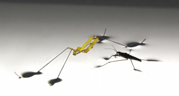 Il robot strider creato dai ricercatori della Seoul National University
