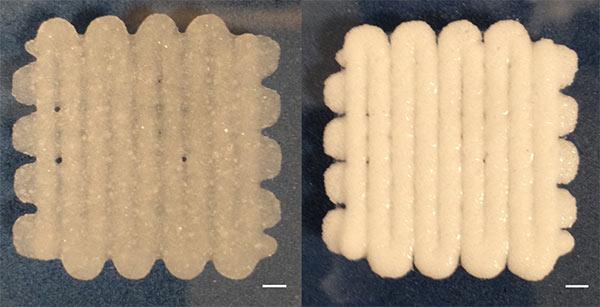 """La """"schiuma"""" stampata in 3D per riparare le fratture ossee"""