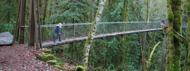 Islandwood Bridge