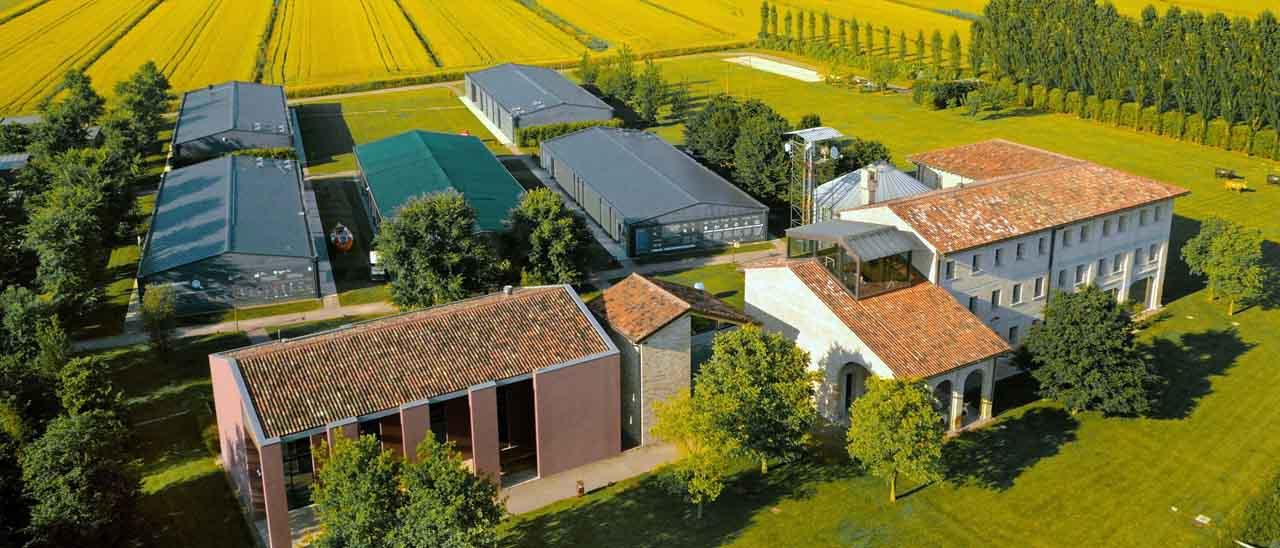 Cosa significa h farm in borsa webnews for Cosa significa matteo