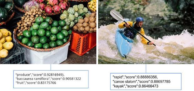 Un esempio degli elementi identificati in un'immagine dalla tecnologia
