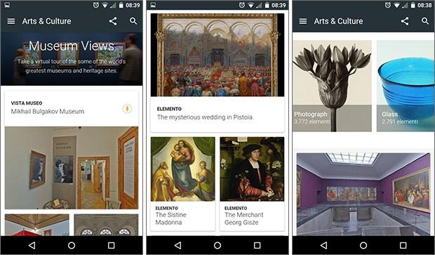 Screenshot per l'applicazione Arts & Culture di Google