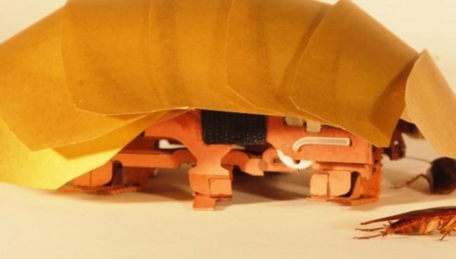 CRAM, scarafaggio robot per ricerca e soccorso