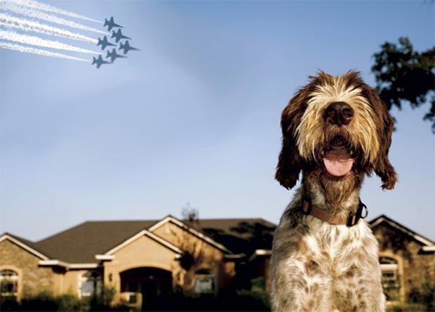 La fotografia inviata da William Lascelles al contest Your Shot di National Geographic nel 2010, poi rivelatasi un falso