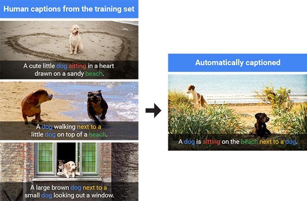 A sinistra alcune delle immagini impiegate per insegnare all'IA come generare le didascalie e a destra il risultato