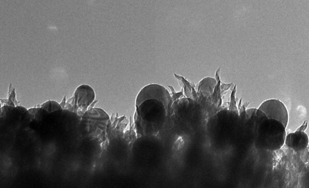 Nanospike di carbonio