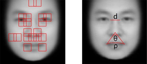 I tratti somatici presi in esame dal sistema di intelligenza artificiale