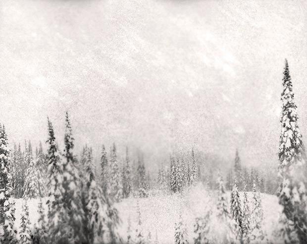 """Marcus DeSieno, Surveillance Landscape """"46.880000, -121.726900"""""""