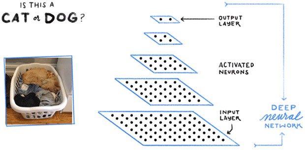 La struttura di una rete neurale