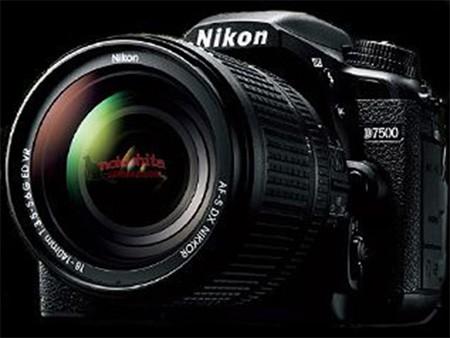 Prima immagine non ufficiale per Nikon D7500