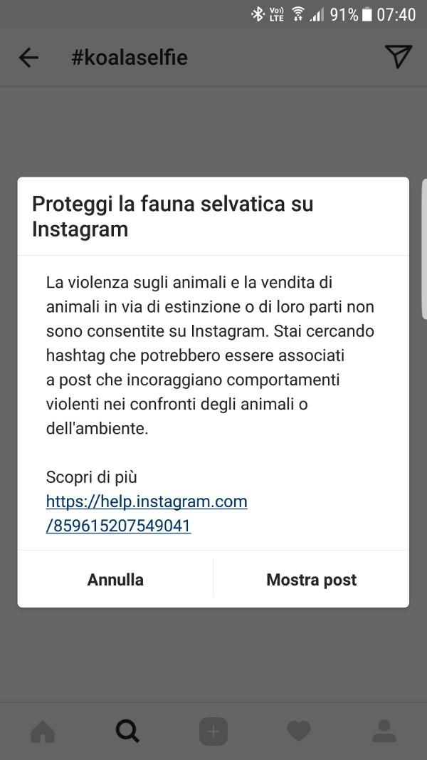 Instagram protegge gli animali e l'ambiente