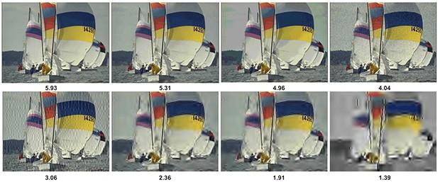 Le valutazioni assegnate dal sistema Neural Image Assessment a un gruppo di immagini