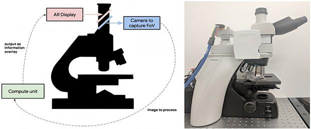 Il microscopio progettato dal team di Google, che sovrappone immagini in pieno stile AR a quanto osservato