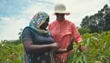 Nuru, un'app utile per le piantagioni di manioca