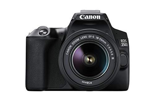 Canon EOS 250D con obiettivo EF-S 18-55 mm f/3.5-5.6 III