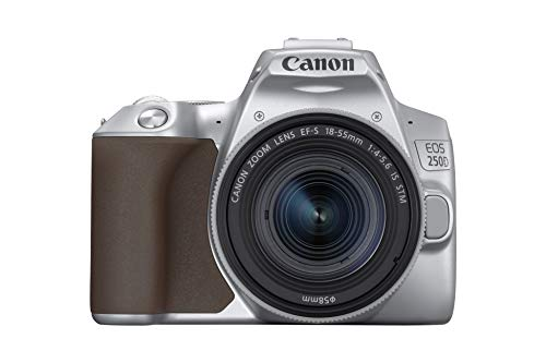 Canon EOS 250D + EF-S 18-55mm f/4-5.6 IS STM (Argento)