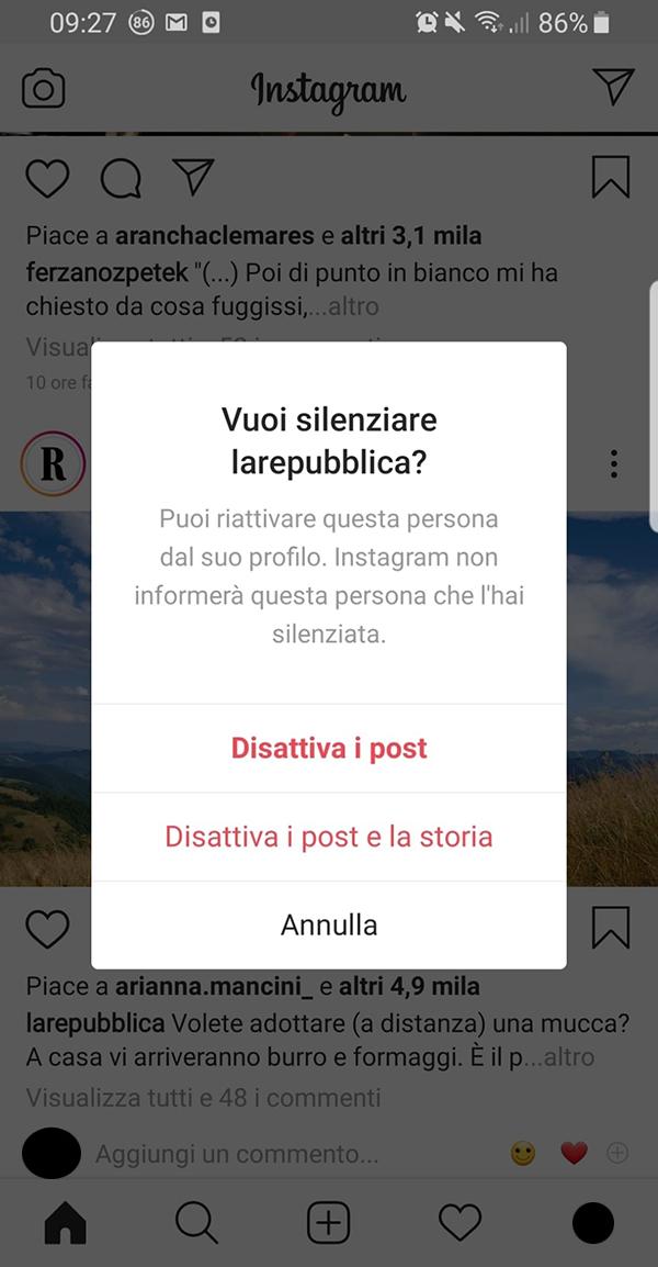 La finestra per silenziare i post su Instagram