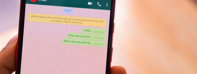 whatsapp chatbox fake news