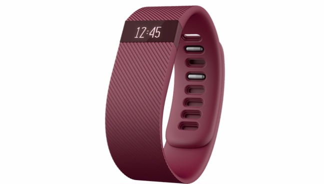 fitbit04